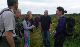 Heathland and Seals Walk for Anglesey Marine Week